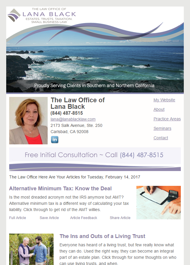 Email Newsletter Example From Our Clients At The Law Offices of Lana Black