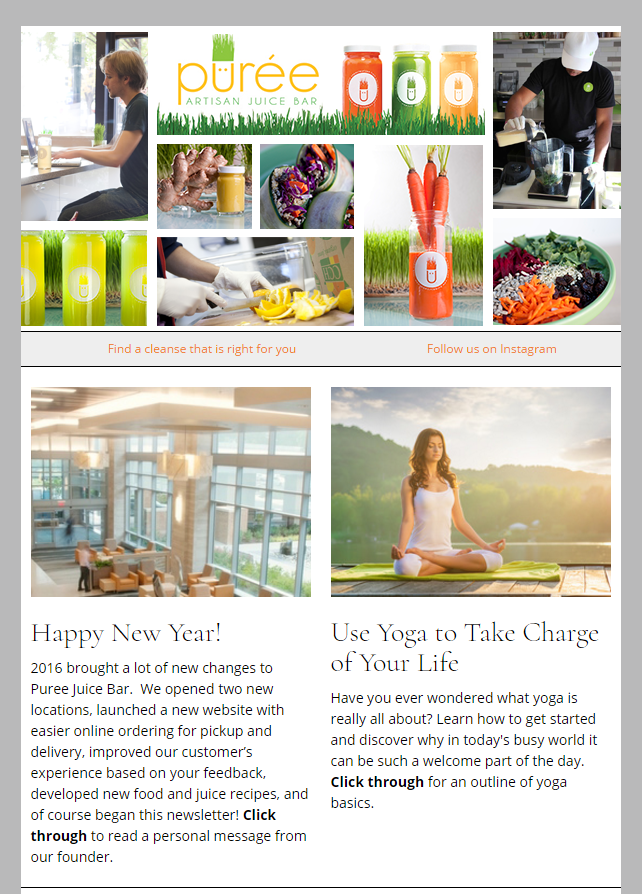 Email Newsletter Example From Our Clients At Puree Artisan Juice Bar